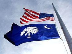The Flag of South Carolina