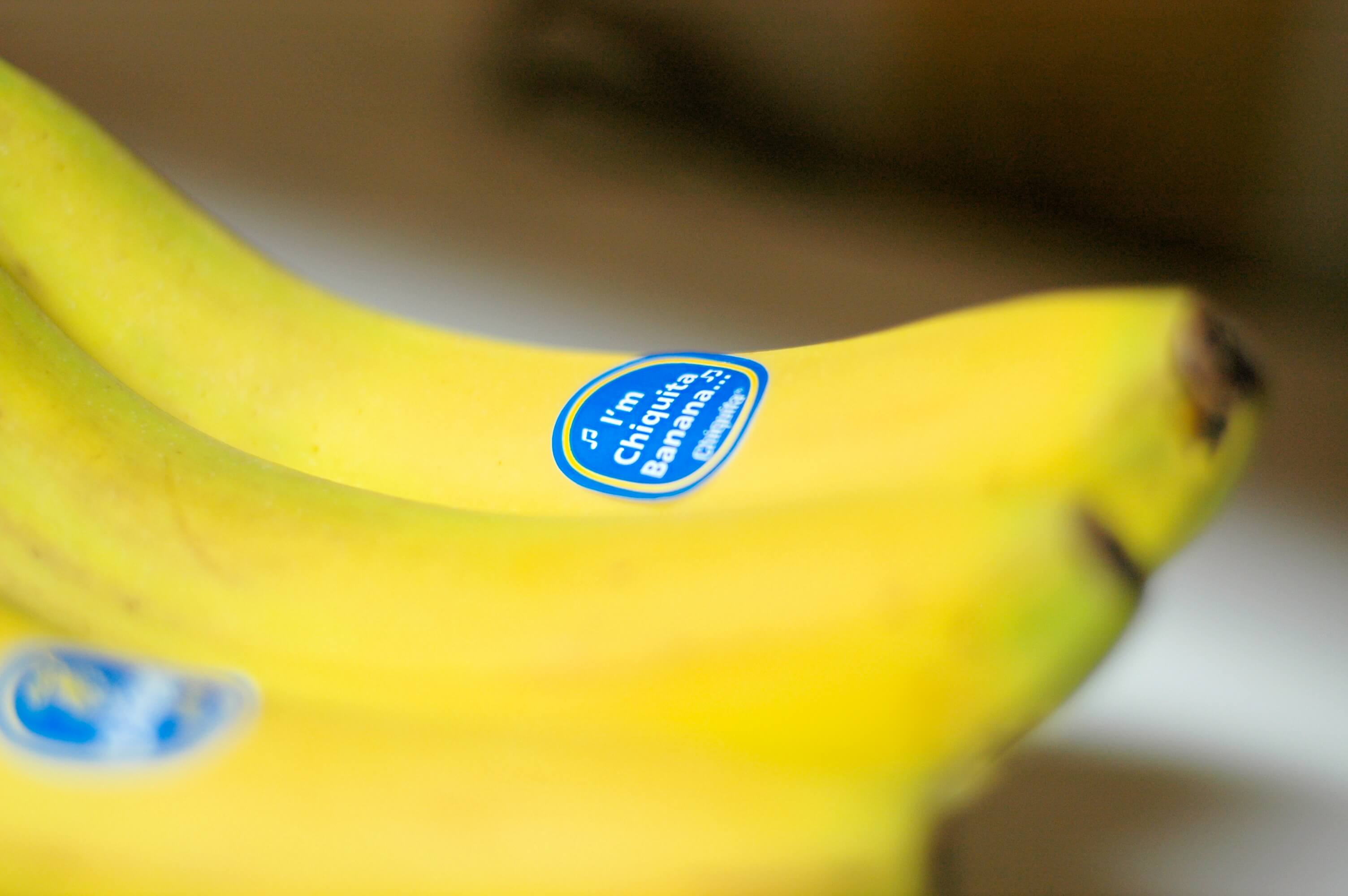 Chiquita Wins In Federal Suit