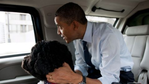 The War of the Dogs Heats up between Obama and Romney