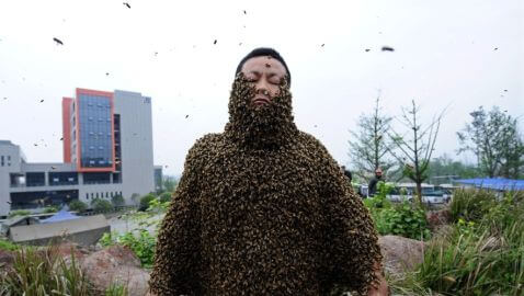 Chinese Beekeeper Covers Body in 73 Pounds of Bees