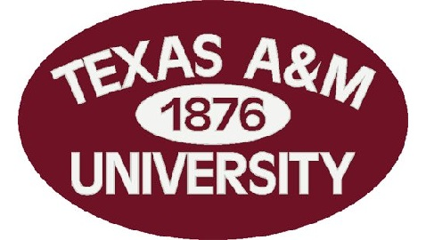 Aric Short Moves Into Vice Dean Position at Texas A&M Law School