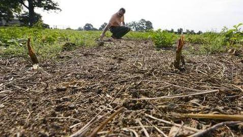 Barclays Made $500 Million on Food Crisis
