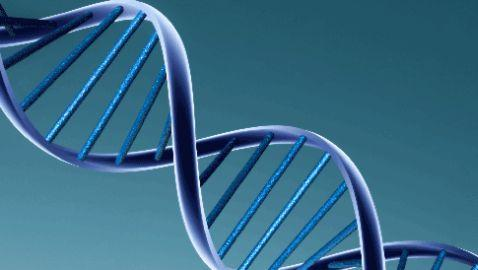 Supreme Court to Decide Legality of DNA Collection by Officers