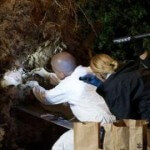 Skeletal Remains Found Under Tree Uprooted by Hurricane Sandy