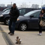 Monkey Wanders Loose in Parking Lot at Toronto Ikea Store