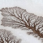 desert-river-fractal-patterns-dried-out