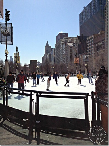 PUNK THE MONK Race Recap & Ice Skating