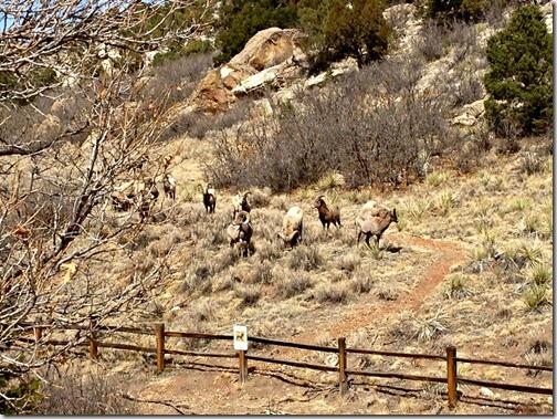 Cheyenne Mountain State Park + WINNER!