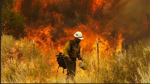 19 Firefighters Die in Arizona Wildfire