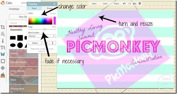 picmonkey graphic 8