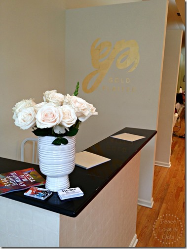 GoldPlaited–Chicago Finishing Salon