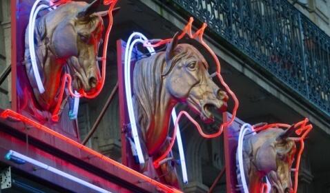 Meat Dealers Illicit Trade