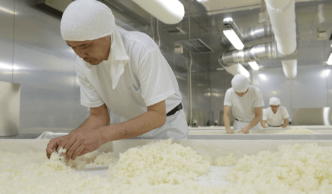 Farmers in Japan Growing More Rice for Sake Export than Ever