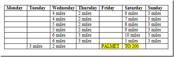 palmetto 200 training plan