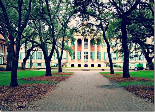 collegeofcharleston