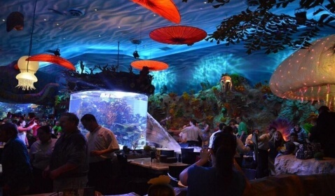 Downtown Disney Aquarium Cafe Fish Tank Bursts