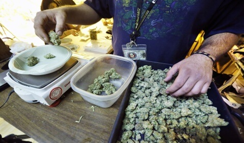 Colorado's Legal Pot Industry $14 Million First Month
