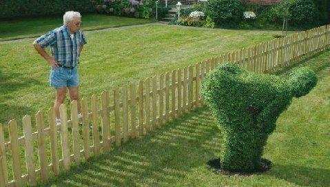 neighbour_problem