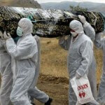 Ebola May Infect Ten Thousand People Per Week