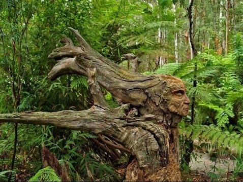 tree_carving_004 (Copy)