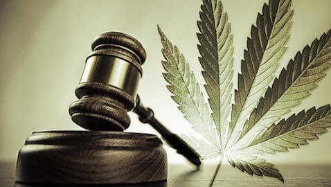Marijuana Law Classes Appearing in Law Schools