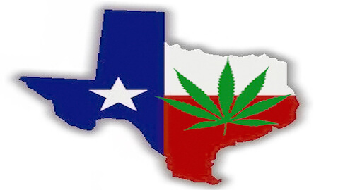 Bill Introduced in Texas that would Decriminalize Marijuana Possession