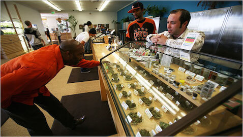 Marijuana may become one of the nation's largest industries.