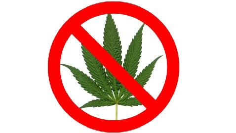 Anti-Pot Sheriffs Hope to Reinstate Marijuana Prohibition in Colorado