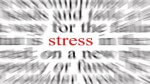Stanford Law Professor Helps Students Deal with Stress