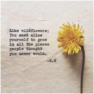 My-Favorite-Quotes-from-Pinterest-7