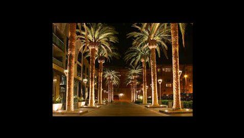IP Law Firm Directory for San Jose, California