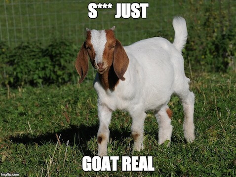Jessie Goat Meme