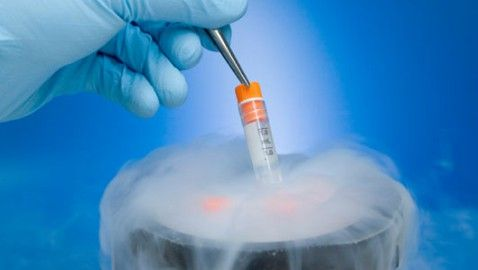 In Vitro Fertilization Agreements Are Binding
