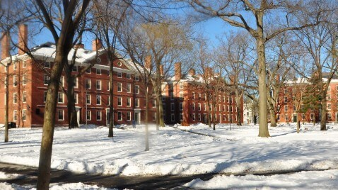 Harvard_yard_winter_2009j
