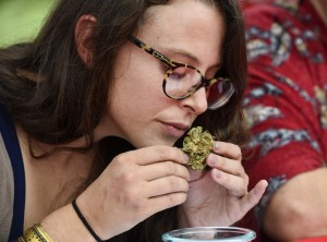 Natalie Ruhl evaluates marijuana at a DC competition last fall. (Jonathan Newton/The Washington Post)