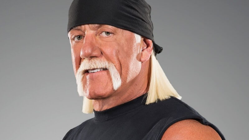 Billionaire Peter Thiel Reportedly Financed Hulk Hogan's Gawker Lawsuit
