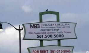 Meltzer & Bell