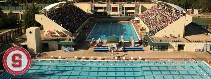 Stanford swimmer