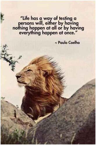 Motivational-Quotes-15