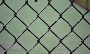 chain link fence sex