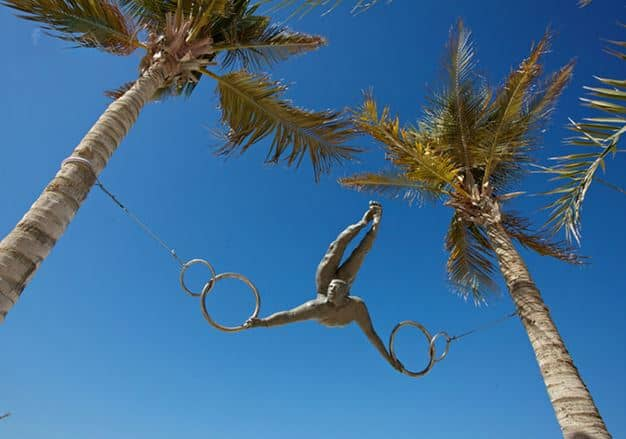 """Circus Act"" between Two Palm Trees"